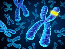 dt_150526_dna_chromosomes_genes_800x600