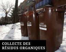 Collecte des résidus organiques