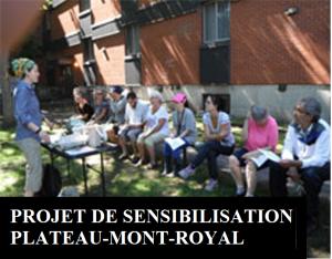 Projet de sensibilisation Plateau-Mont-Royal
