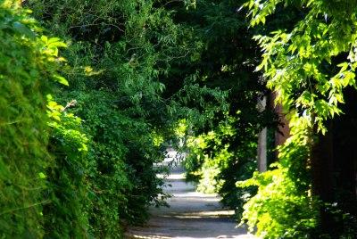 Demande de ruelle verte à Montréal