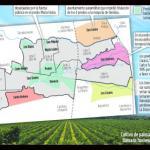 Cepeda celebró decisión del Incoder que ordena recuperar más de 1.200 hectáreas de hacienda Bellacruz