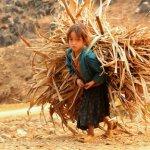 Conferencia Global en Brasil busca disminuir el trabajo infantil