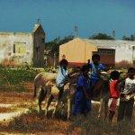 Extinción de niños wayúu