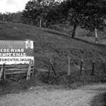 Campesinos del norte del Cauca víctimas de montaje judicial