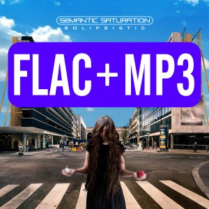 FLAC and MP3