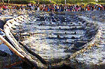 wisata rembang Kapal Kuno Situs Punjulharjo