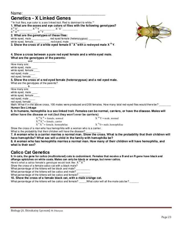 10th Grade Biology Worksheets with Answers as Well as X Biology Worksheet Kidz Activities