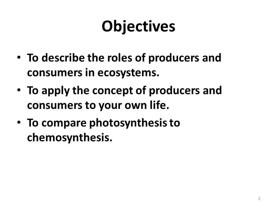 3.2 Energy Producers and Consumers Worksheet Answer Key with Energy In Ecosystems Chapter 13 Unit Objectives to Describe the