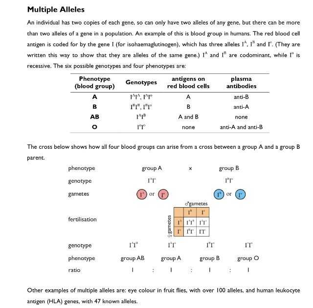 Abo Rh Simulated Blood Typing Worksheet Answers Along with 71 Best Hs Ls3 3 Population Genetics Images On Pinterest