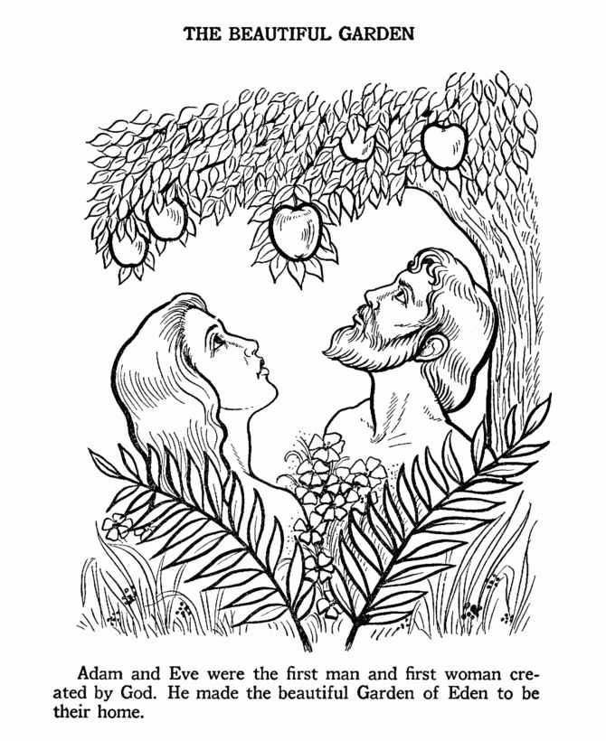 Adam and Eve Worksheets Also 65 Best Adam & Eve Images On Pinterest