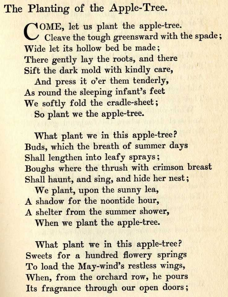 Anne Bradstreet Worksheet Answers and 11 Best Books and Poems From My Childhood Images On Pinterest