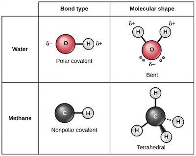 Bonding Basics Ionic Bonds Worksheet Answers Also Ionic Covalent and Metallic Bonds Video