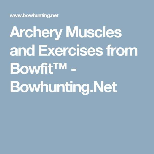 Bowhunter Education Homework Worksheet Answers Also 148 Best Archery Images On Pinterest