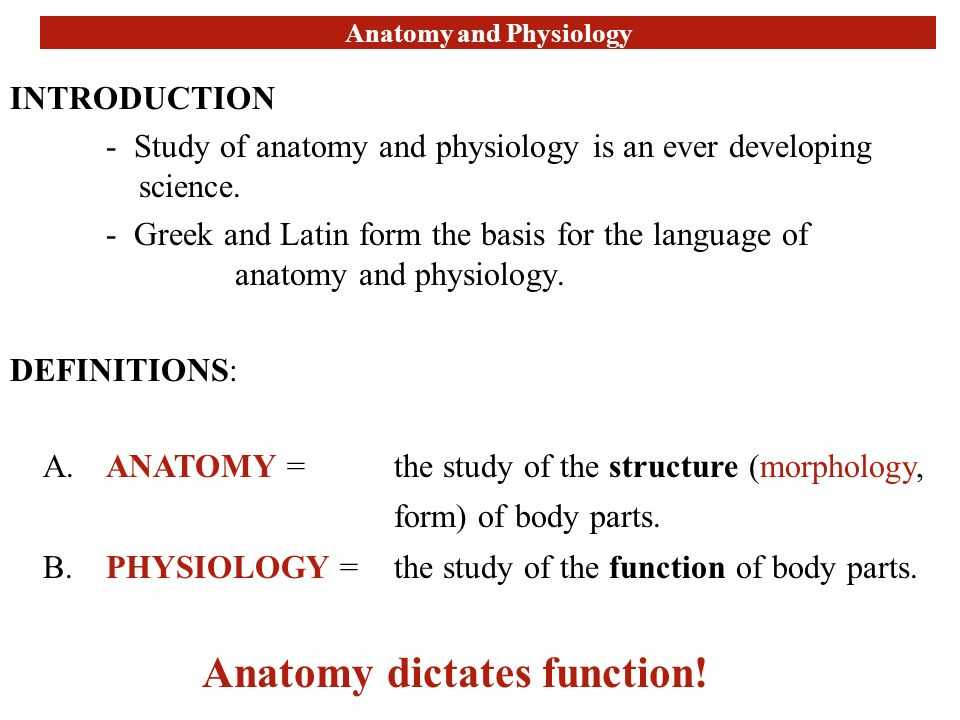 Chapter 1 Introduction to Human Anatomy and Physiology Worksheet Answers Along with tolle Anatomy and Physiology Question and Answers Fotos