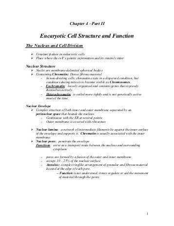 Chapter 4 Cell Structure and Function Worksheet Answers or Chapter 4 Cell Structure and Function Worksheet Answers Best