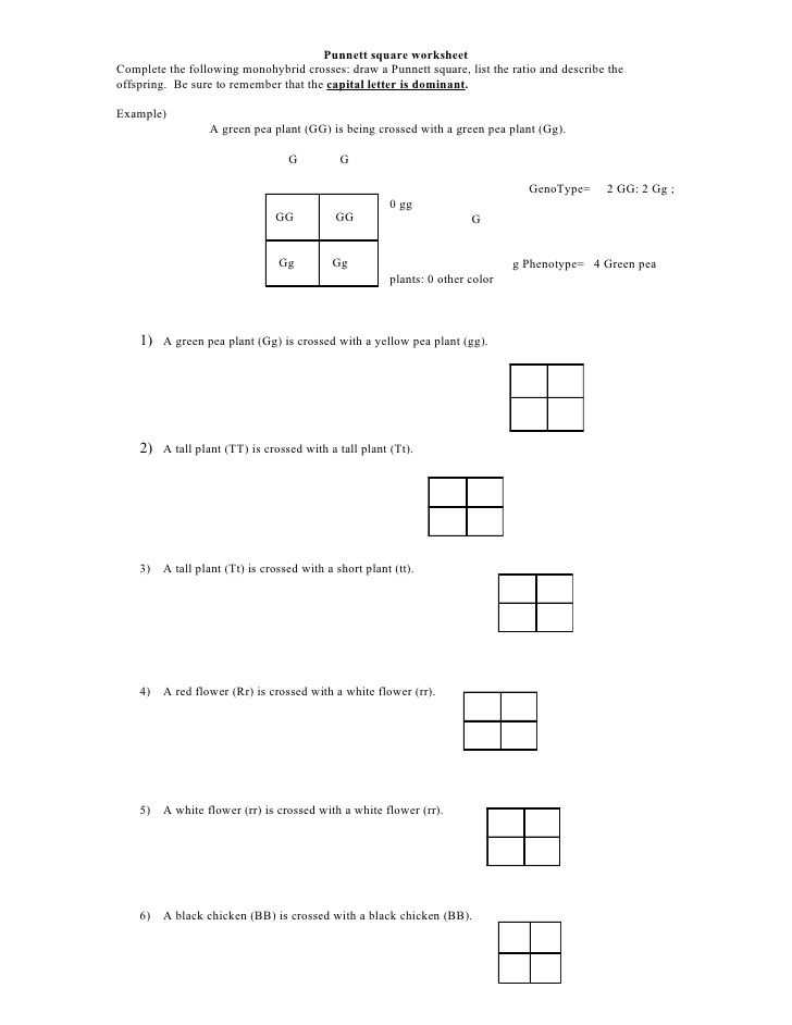 Dna Unit Review Worksheet or Punnett Square Worksheet by Kpolson Via Slideshare