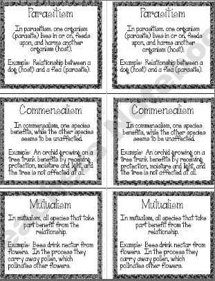 Ecological Relationships Worksheet together with 25 Best Stem Symbiotic Relationships Images On Pinterest