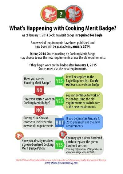 Emergency Prep Merit Badge Worksheet with 33 Best Boy Scout Merit Badges Images On Pinterest