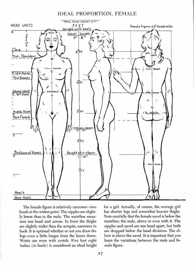 Figure Drawing Proportions Worksheet together with 35 Best Drawing Overall Body Images On Pinterest
