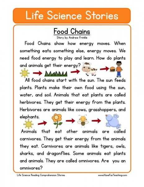 Food Web Worksheet Along with Food Chains …