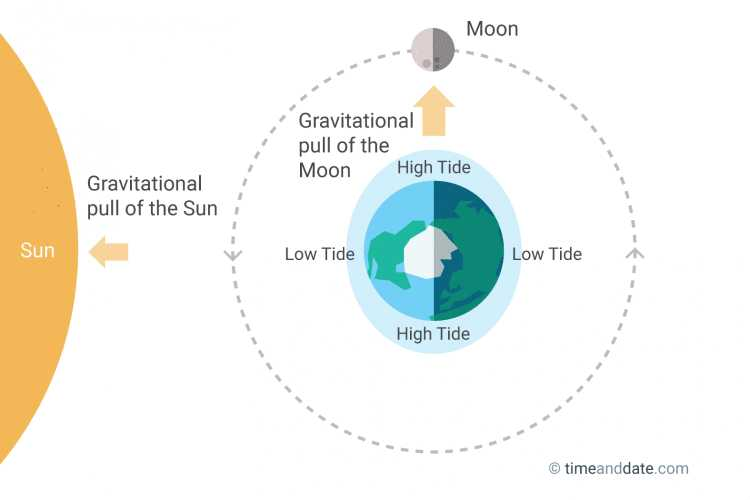 Graphing the Tides Worksheet Answers Also the Moon Causes Tides On Earth