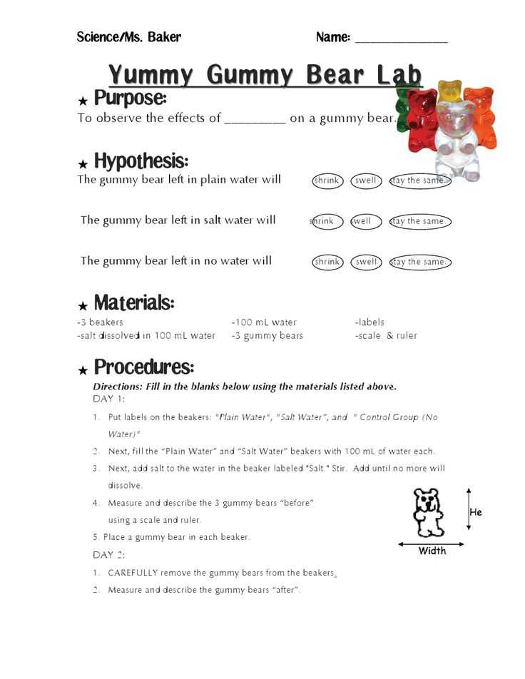 Gummy Bear Science Experiment Worksheet or 13 Best Science Project Images On Pinterest