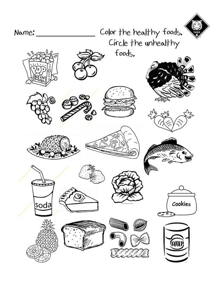 Healthy Food Worksheets or 122 Best Health and Fitness Class Images On Pinterest