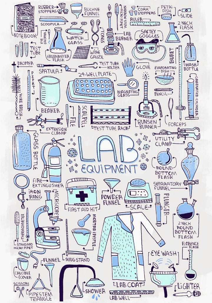 Laboratory Equipment Worksheet with 543 Best Mlt ascp Scientist Images On Pinterest