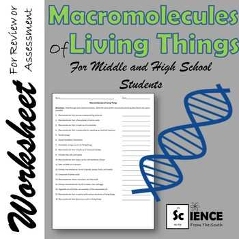 Macromolecules Worksheet Answer Key and Macromolecules Of Living Things Worksheet for Middle and High School