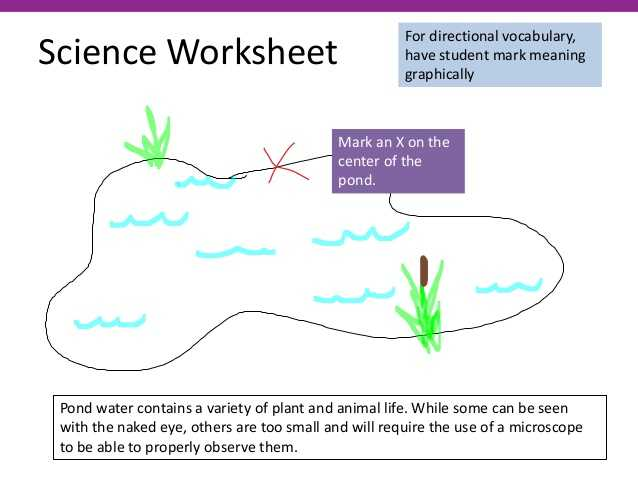 Pond Water Microscope Lab Worksheet as Well as Teaching Students with Literacy Problems—including Dyslexia
