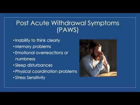 Post Acute withdrawal Syndrome Worksheet or Post Acute withdrawal Syndrome Paws