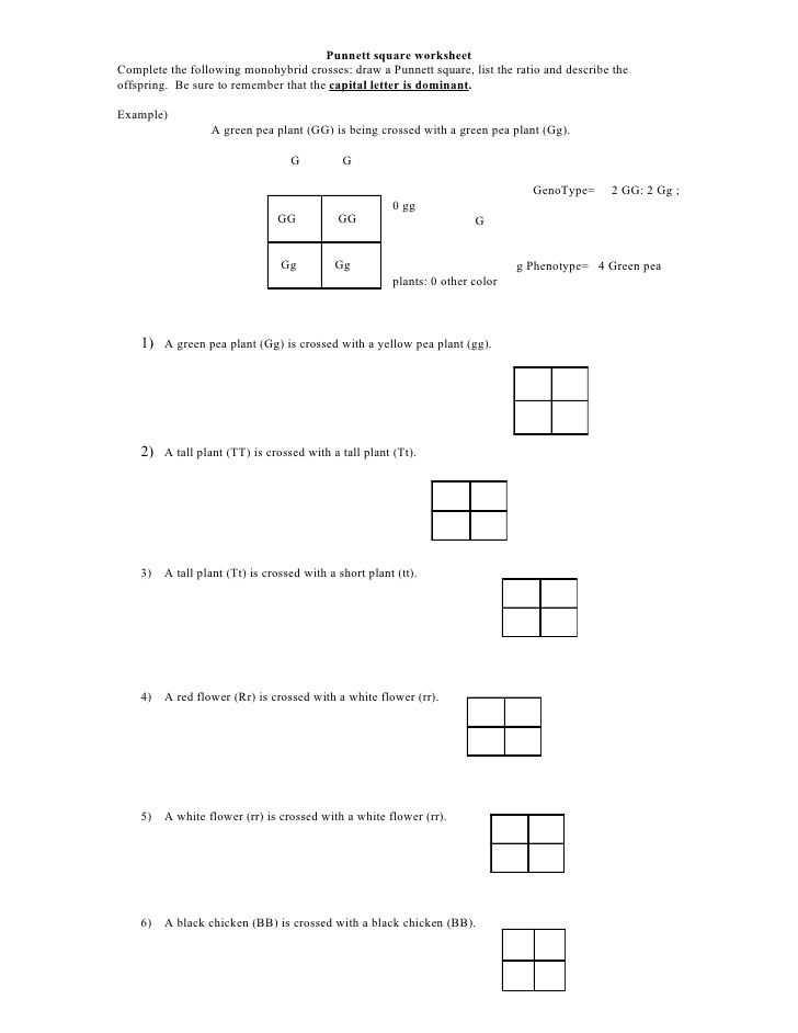 Rna Worksheet Answers together with Punnett Square Worksheet by Kpolson Via Slideshare