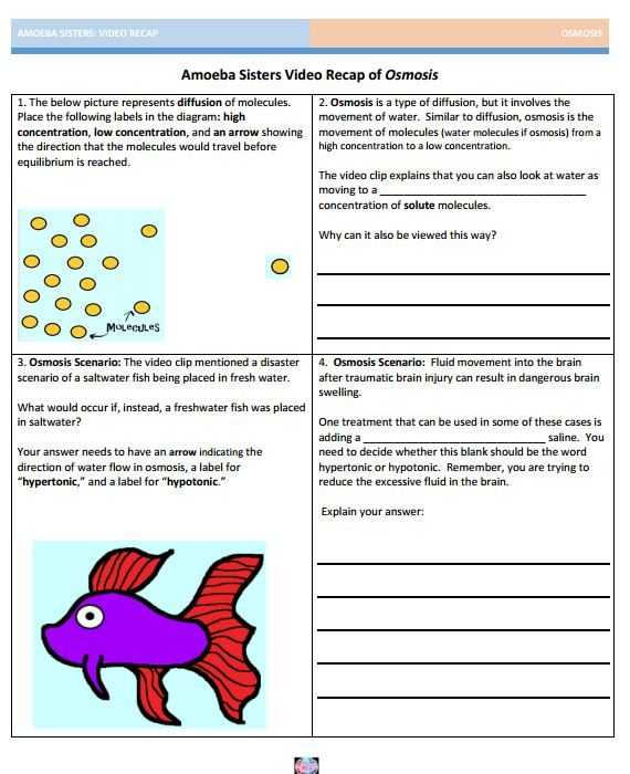 Say It with Dna Protein Synthesis Worksheet Answers Along with 27 Best Amoeba Sisters Handouts Images On Pinterest