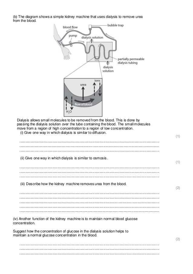 Science 8 Diffusion and Osmosis Worksheet Answers with Diffusion Osmosis and Active Transport Practice Questions