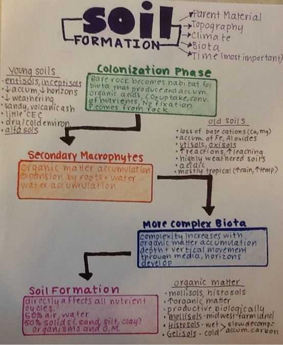 Soil formation Worksheet or soil formation School Stuff Pinterest