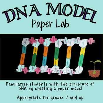 Strawberry Dna Extraction Lab Worksheet together with Dna Structure Lab Paper Model