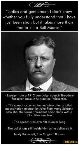 Teddy Roosevelt Square Deal Worksheet Along with 93 Best theodore Teddy Roosevelt Images On Pinterest