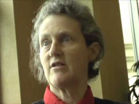 Temple Grandin Movie Worksheet together with 86 Best Temple Grandin Images On Pinterest