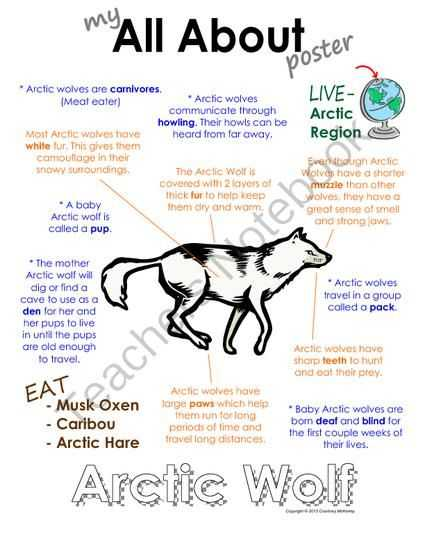 Wolves In Yellowstone Worksheet Also My All About Arctic Wolf Book Arctic Polar Animals