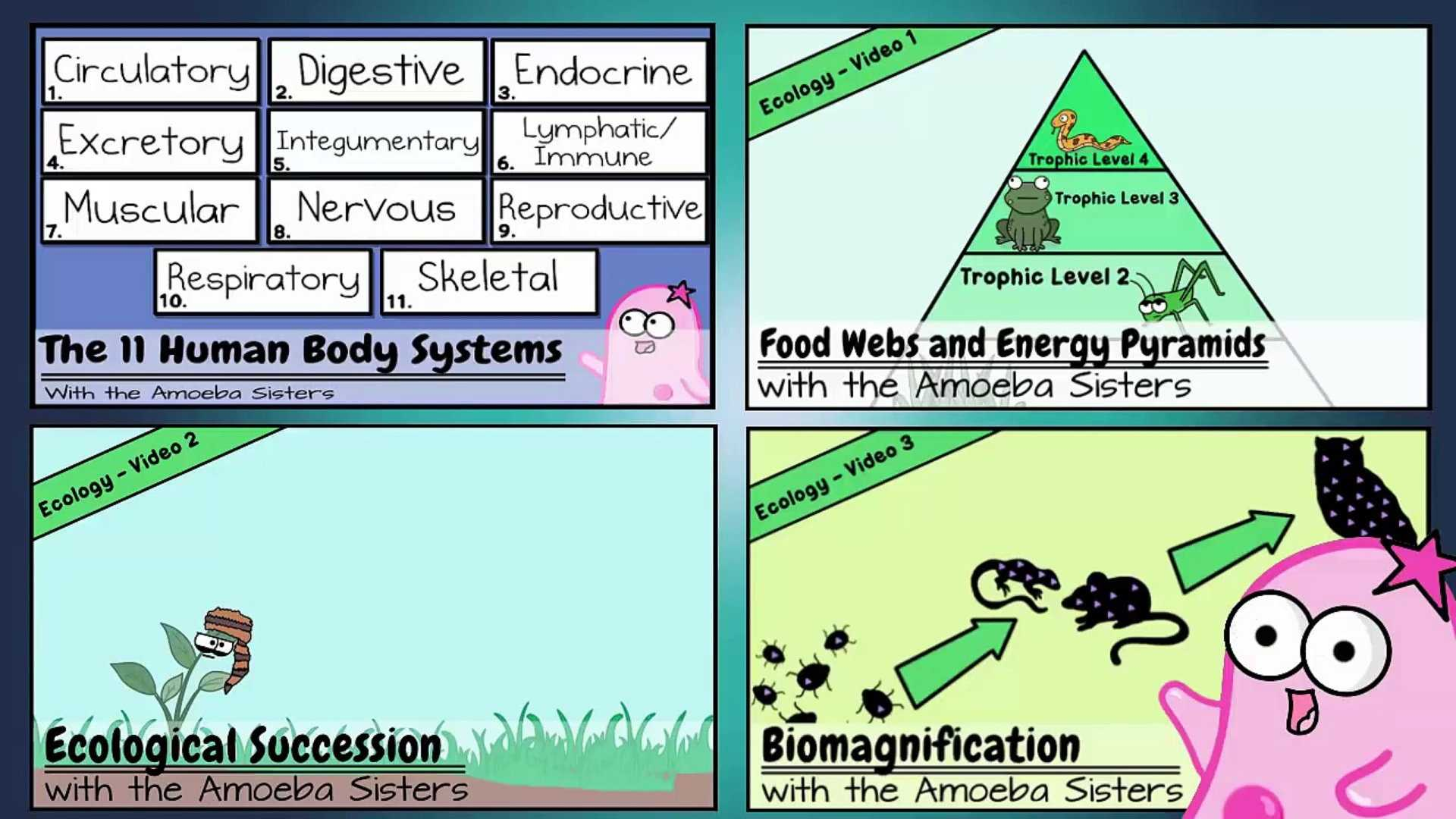 Amoeba Sisters Video Recap Biomolecules Worksheet Answers Also Updated Amoeba Sisters Human organ Systems