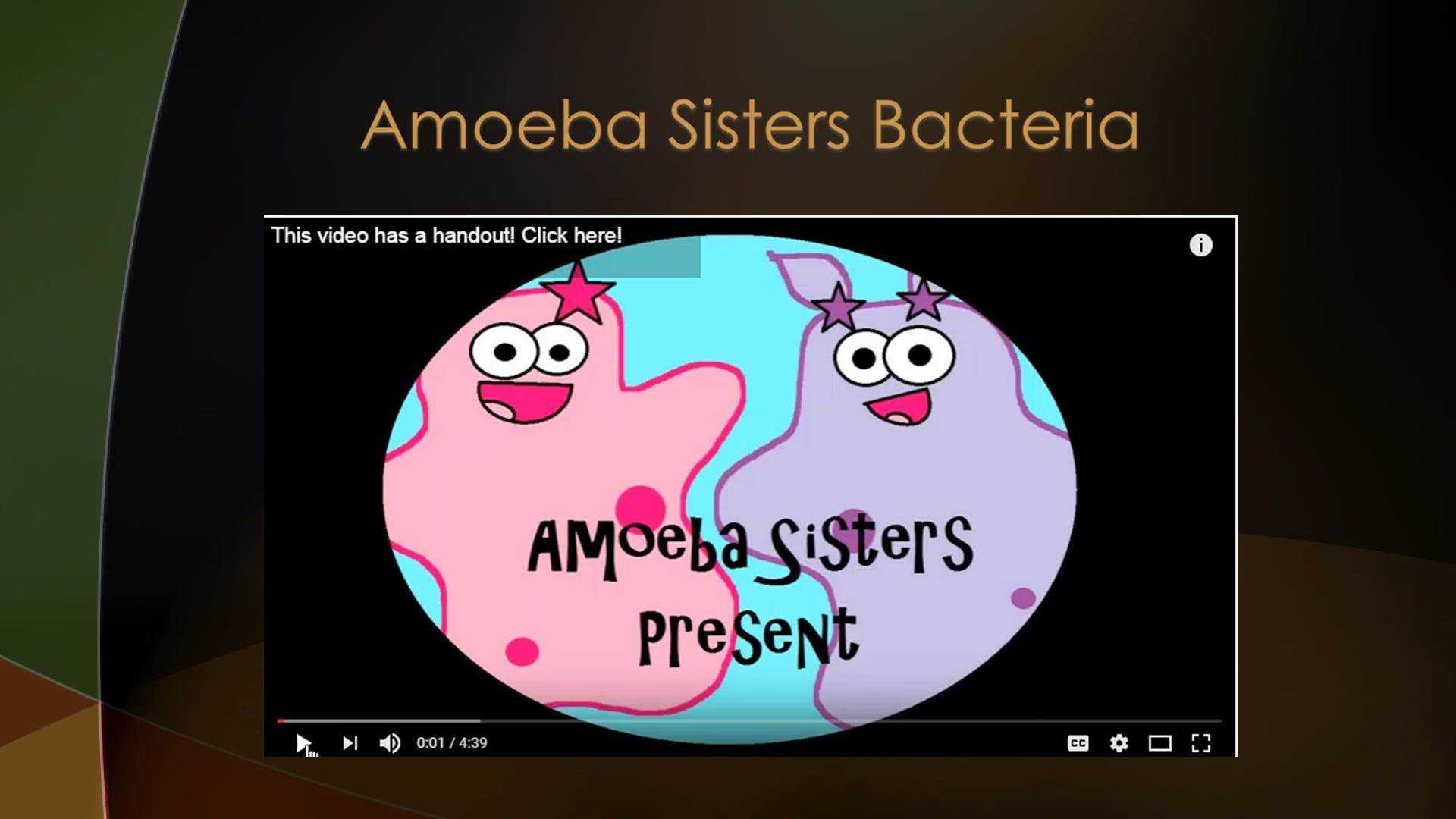 Amoeba Sisters Video Recap Biomolecules Worksheet Answers as Well as Amoeba Sisters Handouts Science with the Amoeba Sisters Dinocrofo