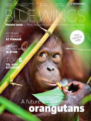 Among the Wild Chimpanzees Worksheet Answers Also Blue Wings Nature issue Summer 2013 by Finnair Bluewings issuu