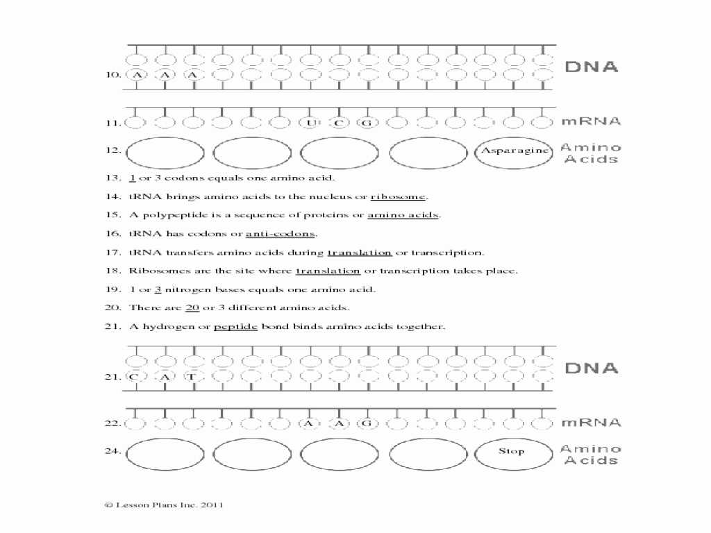 Atoms and Ions Worksheet Answers or Chapter 13 Rna and Protein Synthesis Worksheet Choice Image