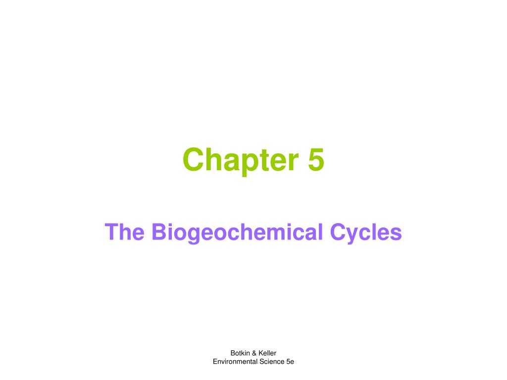 Biogeochemical Cycles Worksheet Answers Along with Ppt Chapter 5 Powerpoint Presentation Id