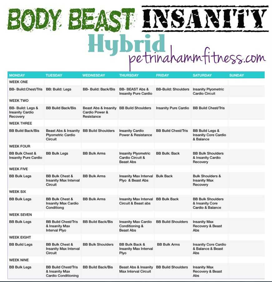 Body Beast Cardio Worksheet Along with Body Beast Insanity Hybrid Fit Well & Strong Pinterest