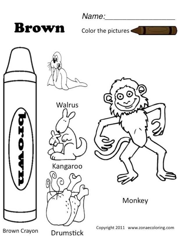 Brown Worksheets for Preschool and 21 Best Preschool & toddler Pumpkinheads Worksheets Images On