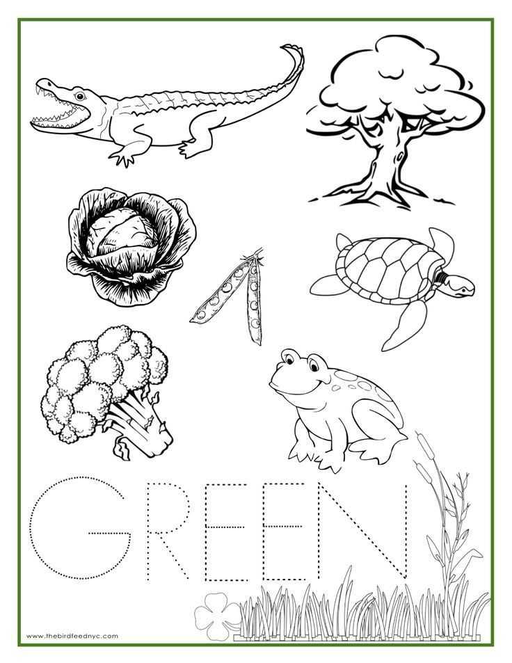 Brown Worksheets for Preschool or 12 Best Color Recognize Images On Pinterest