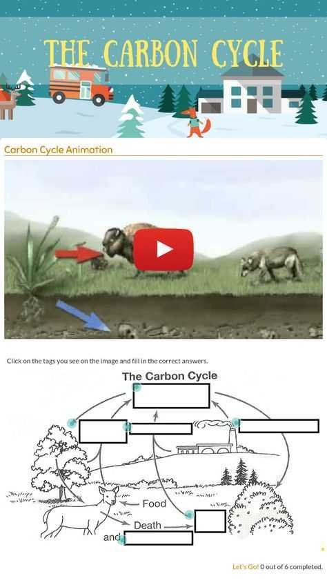 "Carbon Cycle Worksheet Answers and Wizer Me Blended Worksheet ""the Carbon Cycle"""