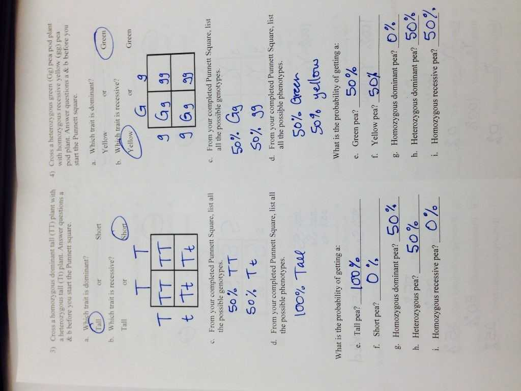 Cell Structure and Function Worksheet Answers or Punnett Square Worksheet Human Characteristics Answers Image