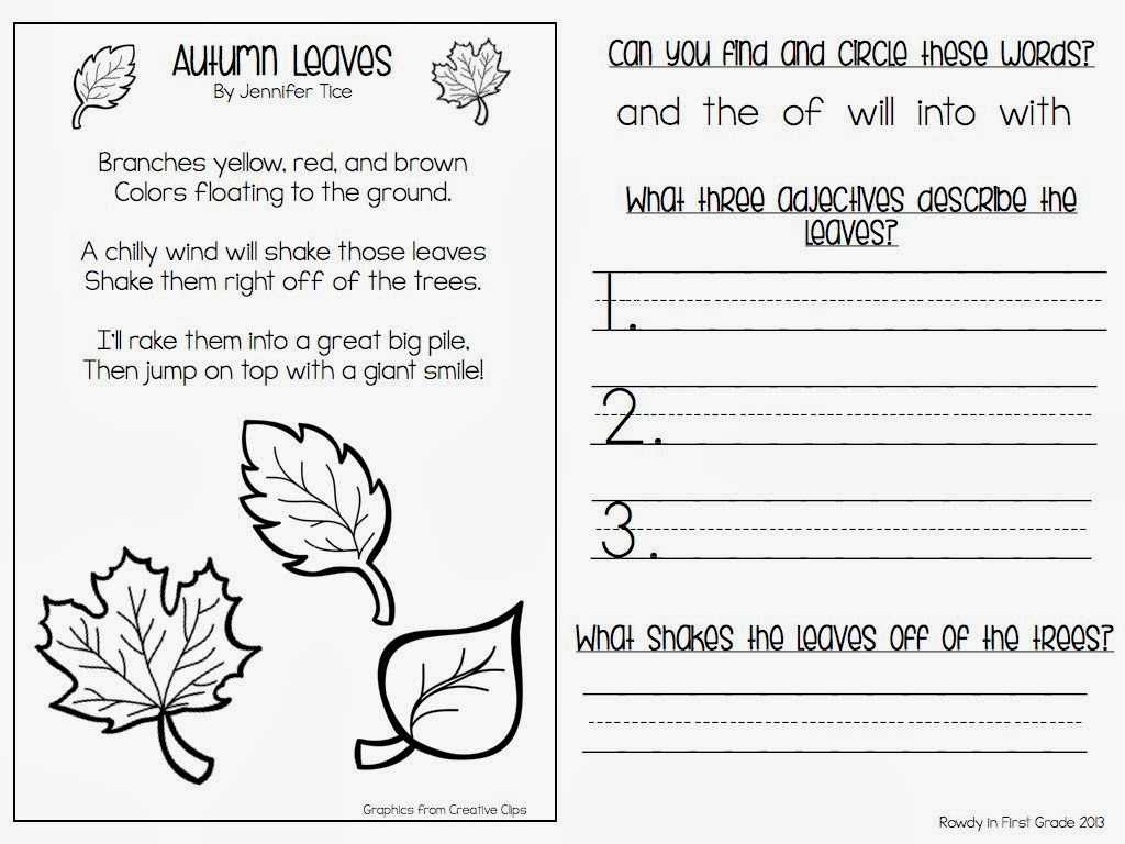Comparing Plants Worksheet or Joyplace Ampquot Scatterplot Worksheets Noun Worksheets for 5th G